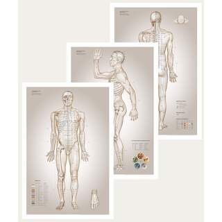 Acupuncture Plate - The Essential Charts of Acupuncture