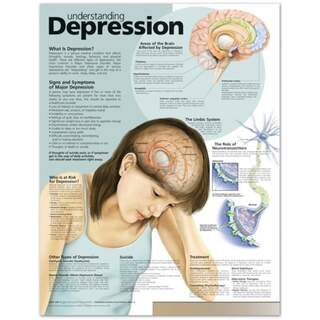 Understanding Depression English Laminated (Understanding Depression)