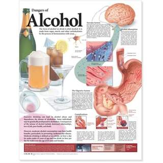 Laminated poster on the harmful effects of alcohol in English