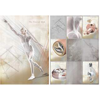 Fascia poster set 60x85 English laminated