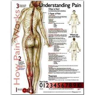 Understanding pain - poster