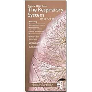 Breathing anatomical brochure